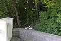 Кам'янець-Подільський парк Сміття IMG 8215.jpg
