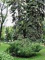Кольцовский сквер - panoramio (2).jpg