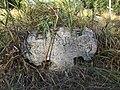 Курган біля кладовища с.Новоселівка, основа більшого кам'яного хреста з заходу.JPG