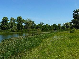 Biloozerskyi National Nature Park - Image: Озера біля села Ліплява