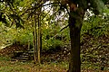 Павильон фотографического вертикального круга Зверева М.С. (ФВК) 03.jpg