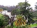 Папский садик - panoramio.jpg