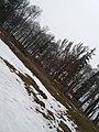 Парк в смт Вишнівець.jpg