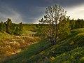 Пейзаж - panoramio (32).jpg