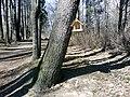 Петровский парк в рыбинске 15.jpg