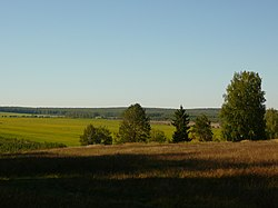 Порек, поля - panoramio.jpg
