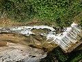 Река Петраница - Лакатник.jpg