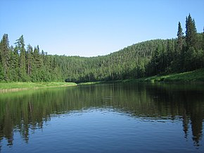 Река Пижма (Усть-Цилемский район Коми).jpg