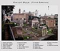Римский Форум.jpg