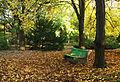 Скамейка в осеннем саду.JPG