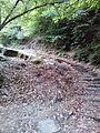 Смоларски водопад 53.jpg