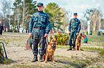 Собаки НГУ 4033 (19328657666).jpg