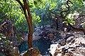 सीतामाता के जंगल,प्रतापगढ़.jpg