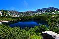 ミクリガ池 - panoramio (2).jpg