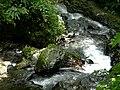 林美溪 Linmei River - panoramio.jpg