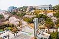 전남대학교 여수캠퍼스 전경(2017 사진공모전 금상).jpg