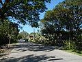 09668jfCuyapo Welcome Districts Roads Parks Center Nueva Ecijafvf 08.JPG