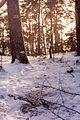 1.4.1993r. Gora Moraska.jpg