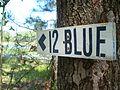 12 Blue.JPG