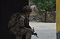 12th Combat Aviation Brigade mission rehearsal exercise 140318-A-DI345-001.jpg
