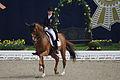 13-04-21-Horses-and-Dreams-Fabienne-Lütkemeier (10 von 30).jpg