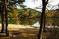171125 Futatabi Park Kobe Japan09s3.jpg