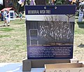 19a.MemorialWishTree.45thSFF.WDC.9July2011 (5920539129) (2).jpg