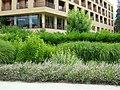 2008 0707 30865 Meran Thermen Park R0041.jpg