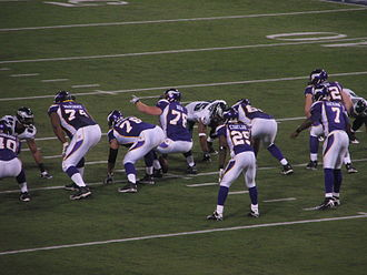 Chester Taylor - Taylor (29) lines up with the Vikings in January, 2009.