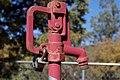 2010-365-141 Don't Pump the Red Pump! (4628466124).jpg
