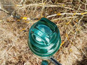 2012-03-13 10-10-48-site-plutons-branche-isolateur.jpg