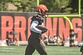 2016 Cleveland Browns Training Camp (28614645121).jpg
