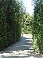 2017-06-20 Giardino di Boboli 39.jpg