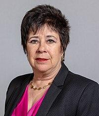 2019-04-03 Karin Hartmann im Hessischen Landtag 3881.jpg