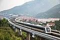 201907 Rolling Stock of Qingdao Metro Line 11.jpg