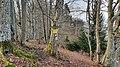 2020-03-01 (163) Fingerposts at Yetisteig, Texingtal, Austria.jpg