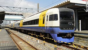 255 series - A 255 series EMU on a Shiosai limited express service in August 2010