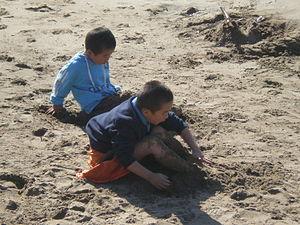 Two Asian American boys playing at Aquatic Par...