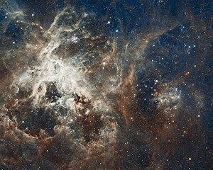 Starburst region - Tarantula Nebula, the largest starburst region in the local group.