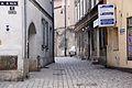 3329viki Oleśnica. Foto Barbara Maliszewska.jpg