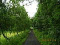 36304 Alsfeld, Germany - panoramio.jpg