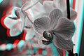 3D CMS CC-BY (15115020014).jpg