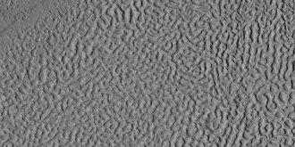 Brain terrain - Image: 45507 2200brains