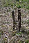 60 Fundament- und Mauerreste Fasslager 05.jpg