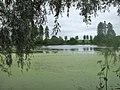 68-258-5011 куявський парк.jpg