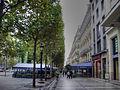AVENUE des CHAMPS-ELYSEES-PARIS-Dr. Murali Mohan Gurram (8).jpg