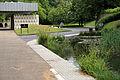 A Grey heron on Crematorium pond at the City of London Cemetery 01.jpg