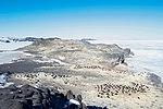 A Rookery of Adélie Penguins Seen by Secretary Kerry in Cape Royds, Antarctica (30877661326).jpg