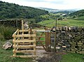 A new gate off Lightside - geograph.org.uk - 1413813.jpg