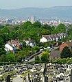 Across Knockbreda Cemetery, Belfast - geograph.org.uk - 799735.jpg